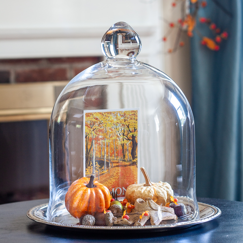 Cloche on a silver tray decorated for fall with pumpkins, a fall postcard, leaves and acorns