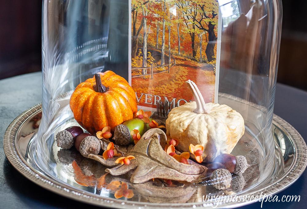 A Vermont postcard, pumpkins, acorns and a pottery leaf under a glass cloche