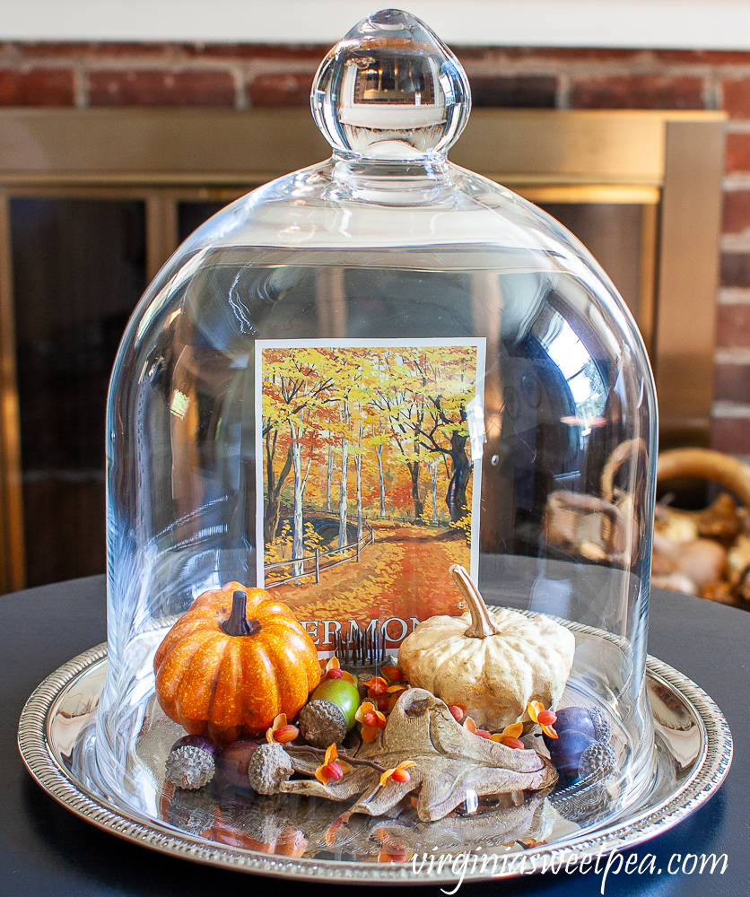 Cloche decorated for fall with a Vermont postcard, pumpkins, acorns, and a pottery leaf