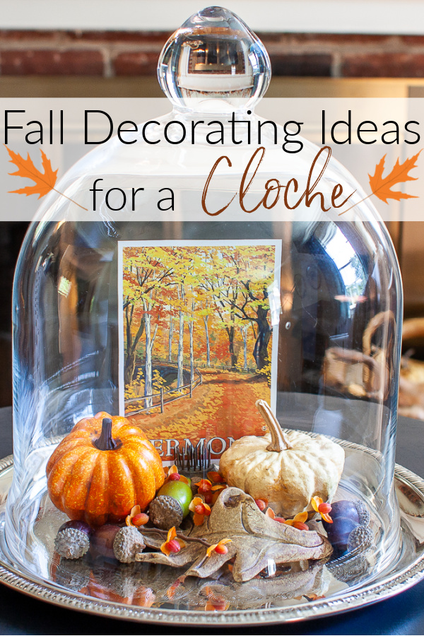 Fall Decorating Ideas for a Cloche - Learn how to create a fall vignette using a cloche.  Many ideas are shared by a group of talented home decor bloggers.  #falldecoratingideas #falldecorideas #fallcloche via @spaula