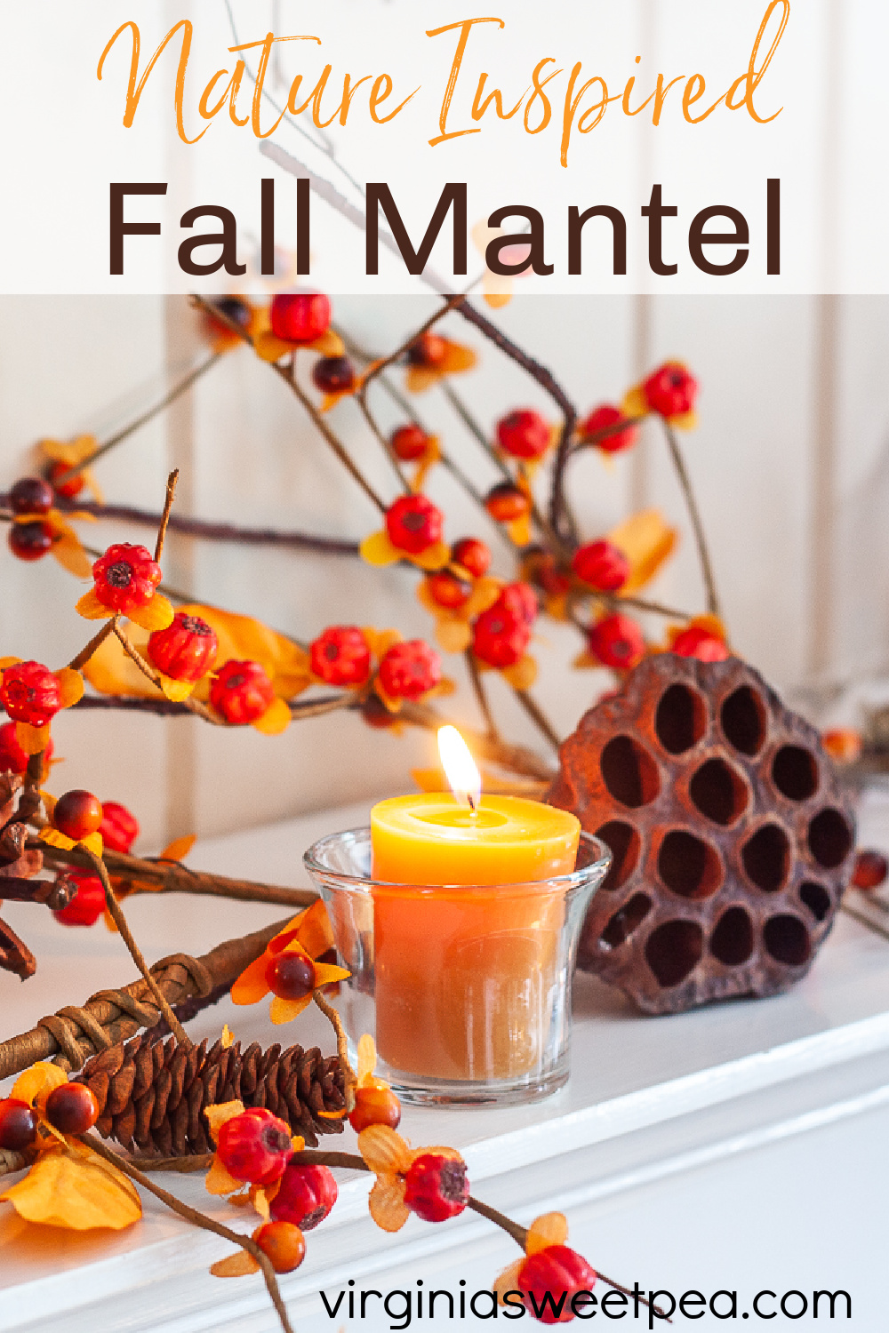 Nature Inspired Fall Mantel Decor - Get fall mantel ideas along with tips for how to decorate a mantel for fall using items from nature.  #fallmantel #fallmantelideas #falldecor #falldecorations via @spaula