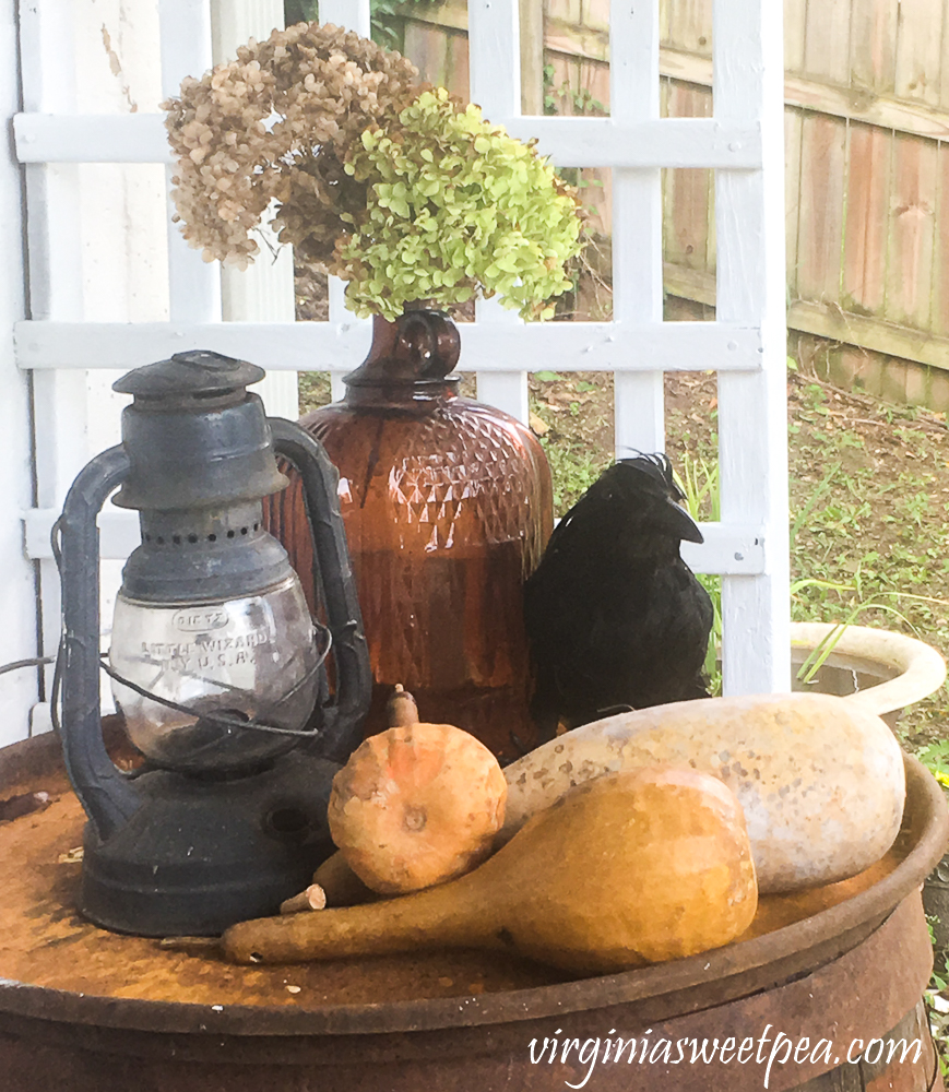 Outdoor fall display with a vintage lantern, dried gourds, a crow, and a vintage bottle filled with dried Hydrangea.