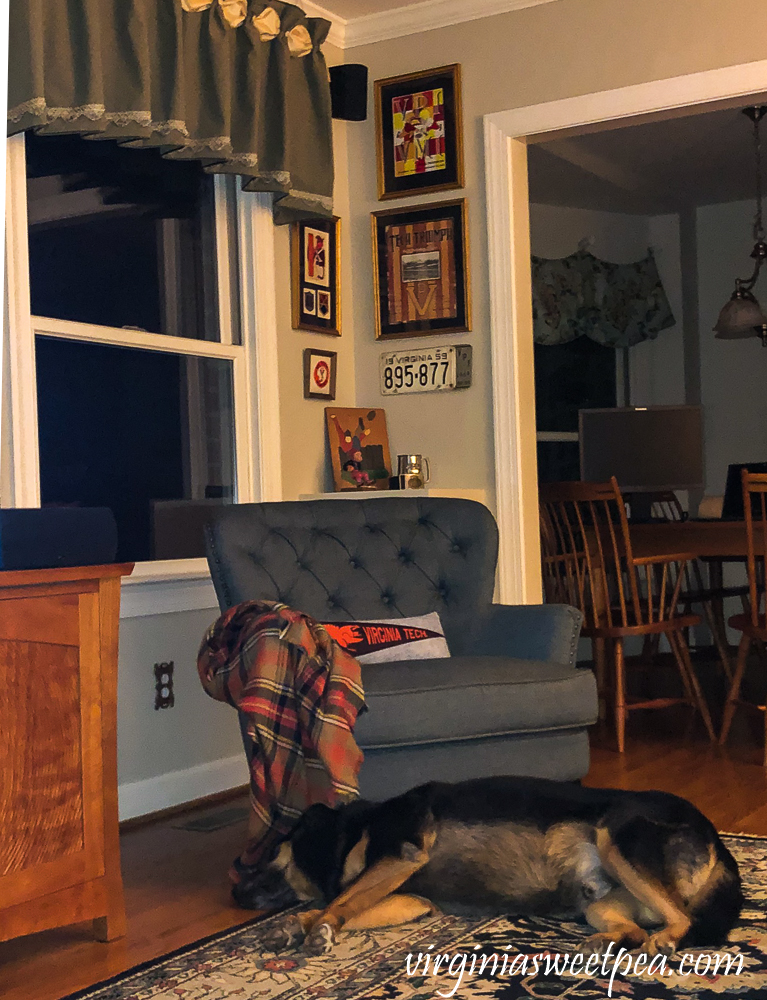 Dog sleeping at night in a family room with a corner decorated with a football theme