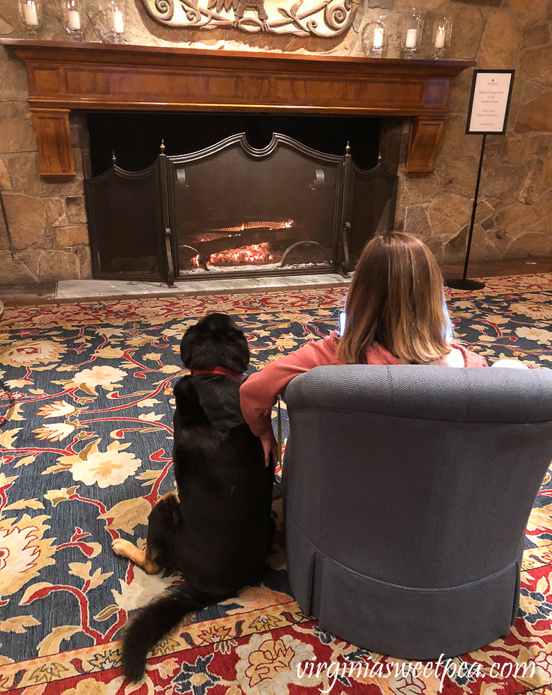 Woman and dog enjoying the fire at Woodstock Inn in Woodstock, VT
