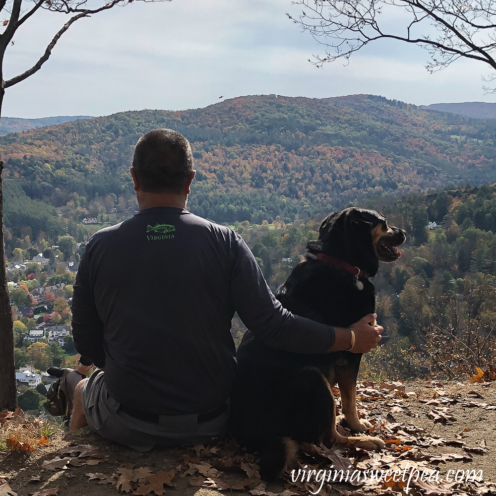 Man and dog enjoying fall foliage at the top of Mt. Tom in Woodstock, Vermont