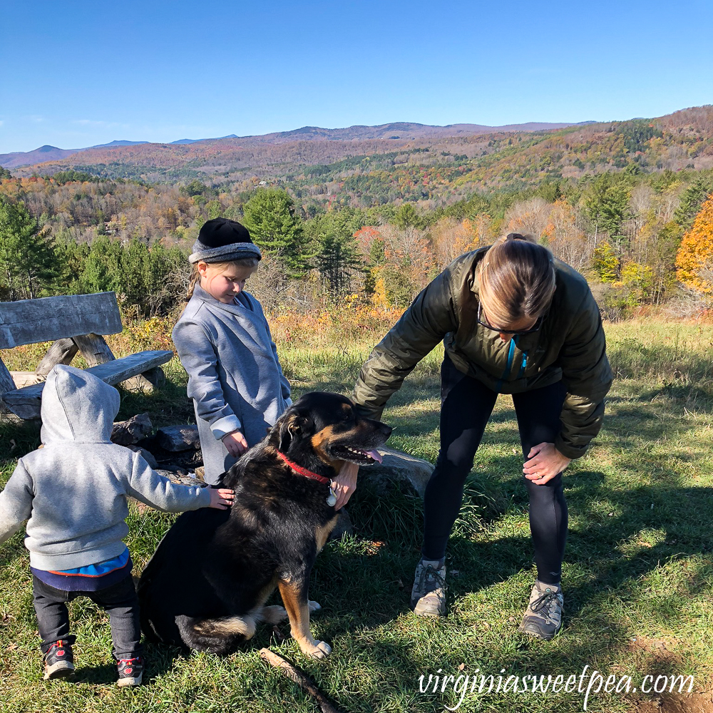 Dog being petted at the summit of Mt. Peg in Woodstock, VT