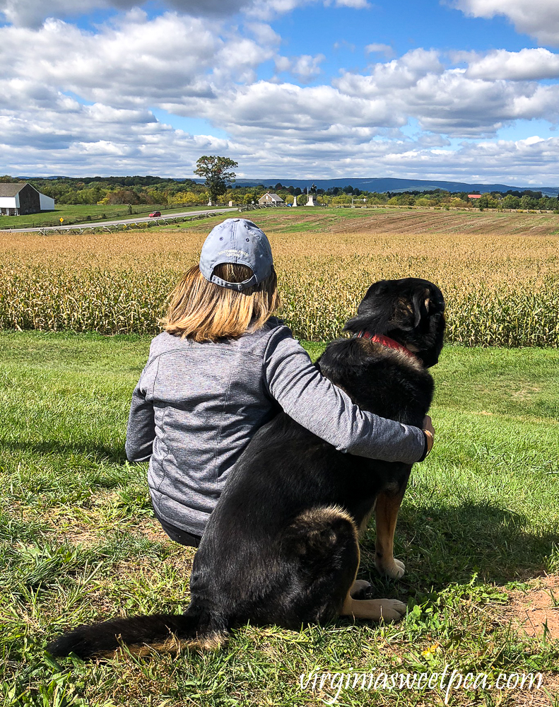 Woman and dog enjoying a fall day at Gettysburg National Military Park