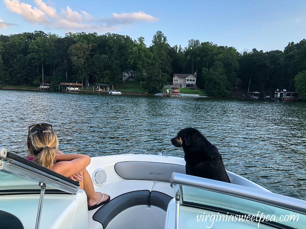 Woman and dog on a boat at Smith Mountain Lake, VA