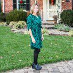 Stitch Fix 41 Hawthorn Jimena Shirt Dress