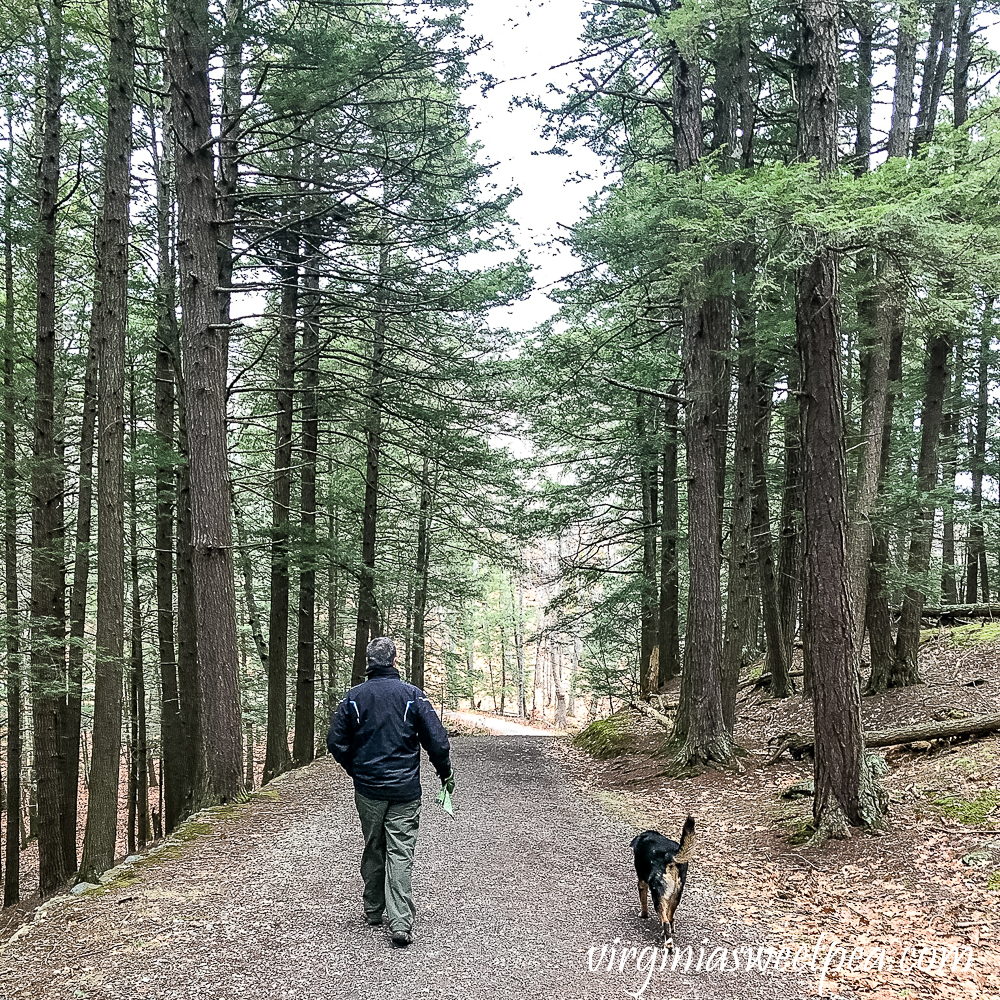 Sherman and David Skulina hiking Mt. Tom in Woodstock, Vermont