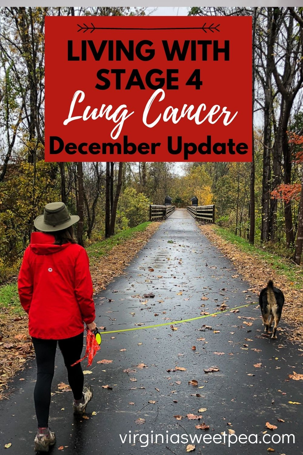 Living with stage 4 lung cancer isn't easy.  This post gives an update on my most recent scans and MRIs and my insurance battles. via @spaula
