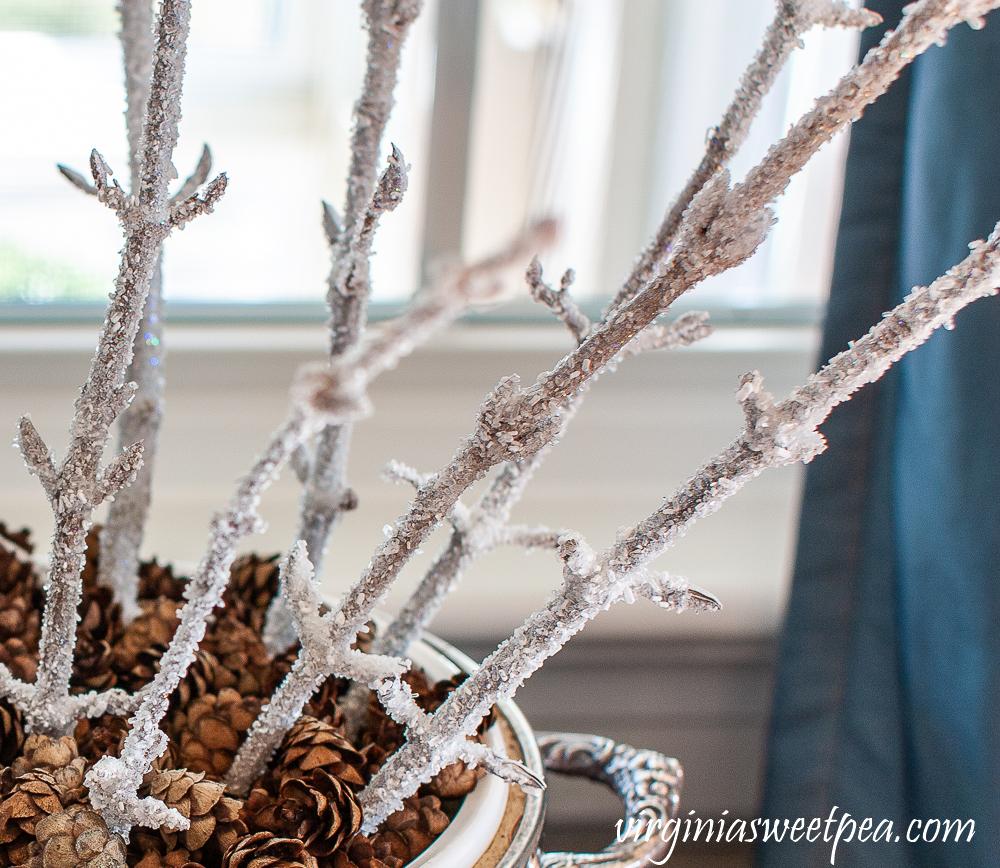 Epsom Salt coated branches