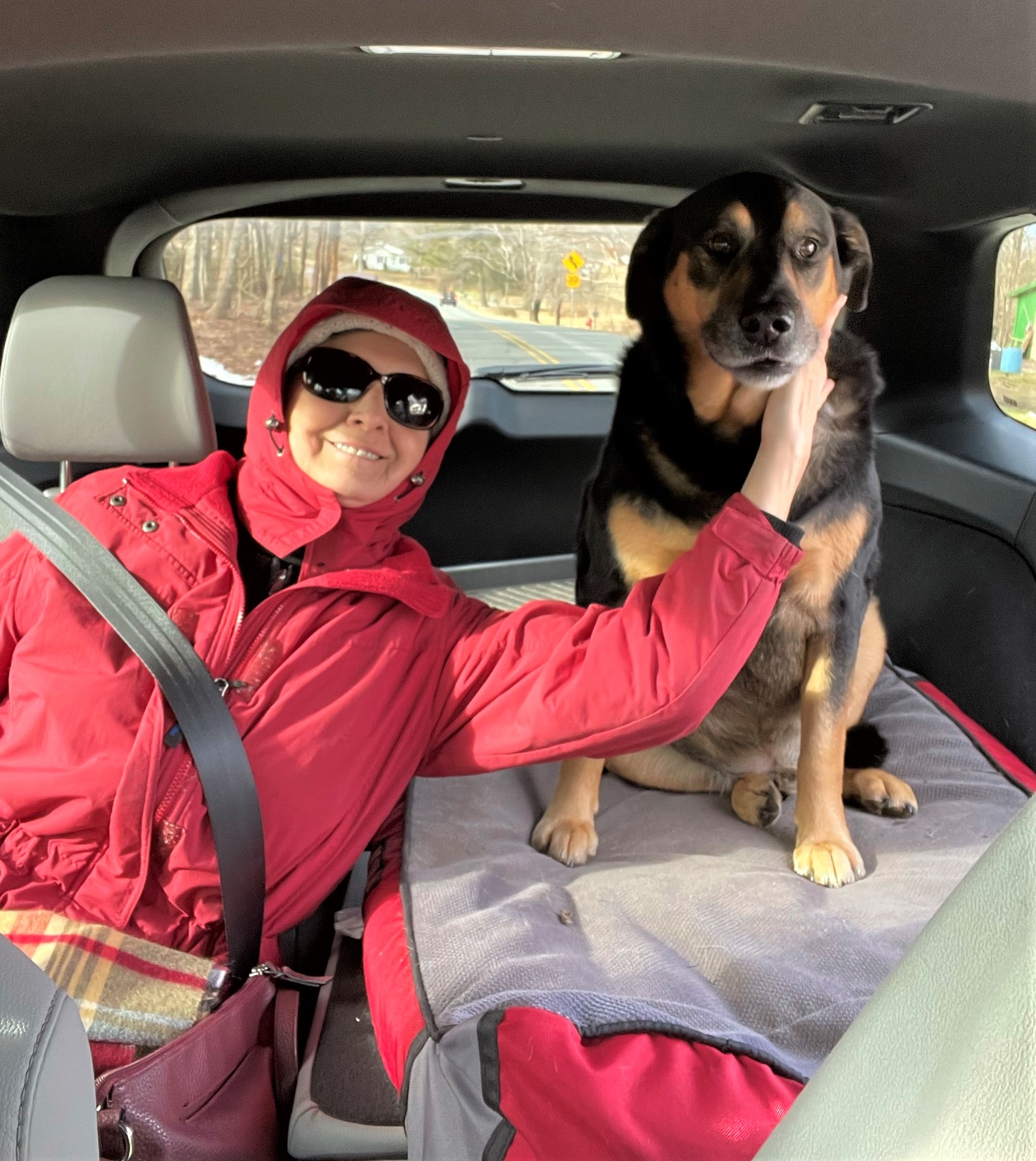 Dog and a woman in a car