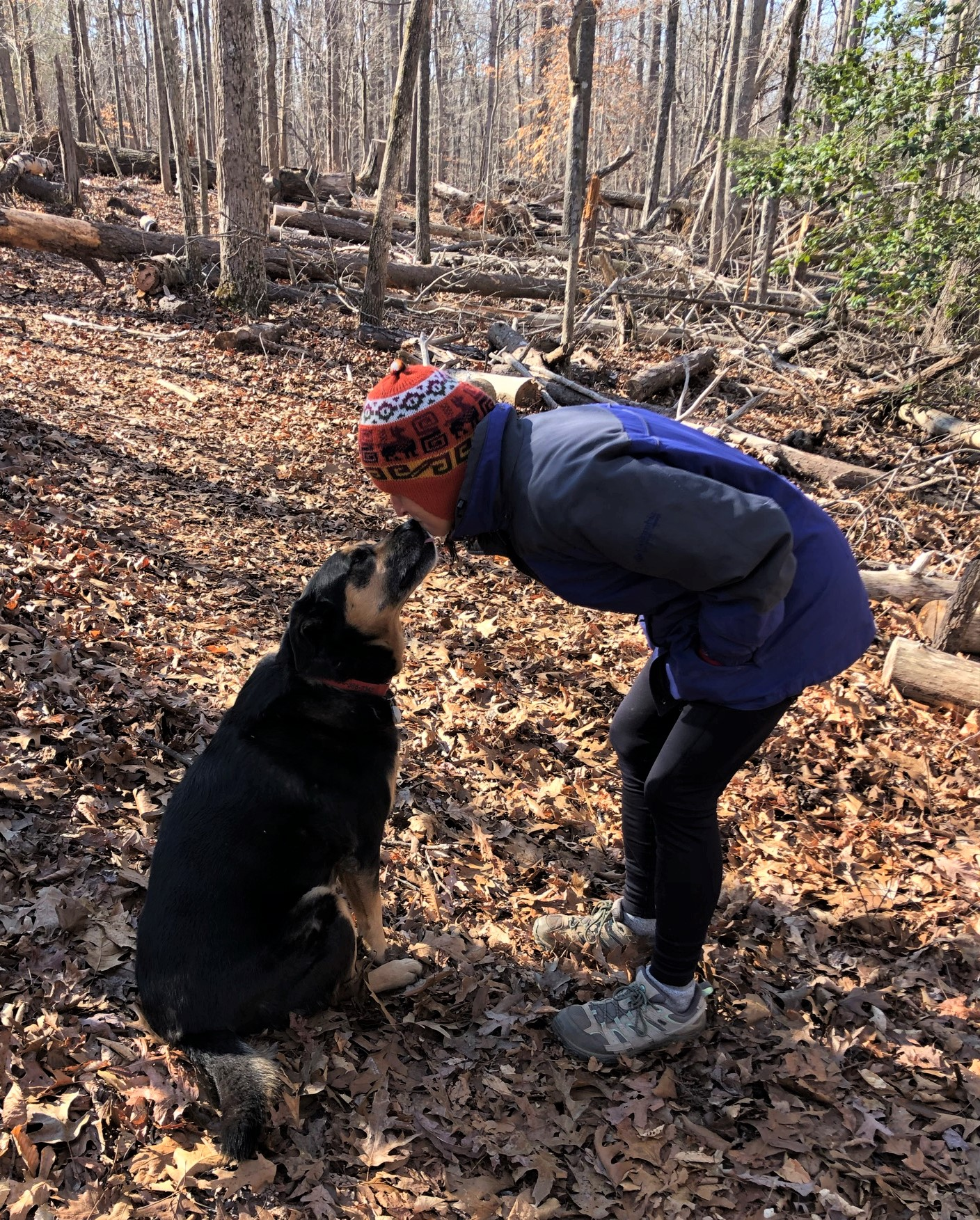 Dog kissing a woman in the woods