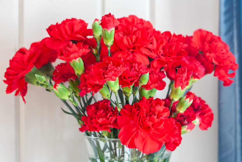 Red Carnations on a Valentine's Day Mantel