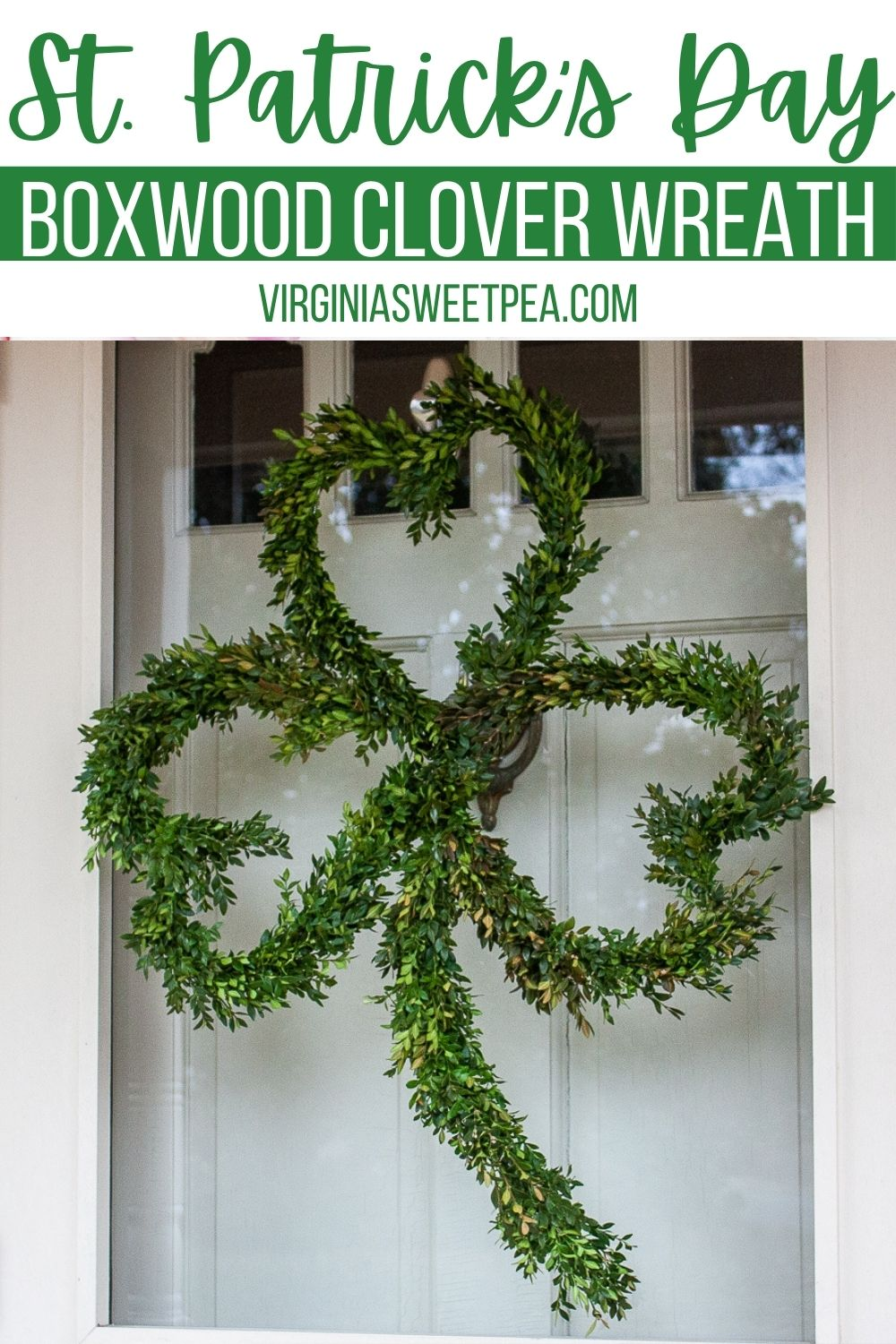 Boxwood wreaths aren't just for Christmas!  Learn how to make a Boxwood clover wreath to use to decorate your front door for St. Patrick's Day.  This wreath is unique and is perfect to use to decorate your home for March. via @spaula