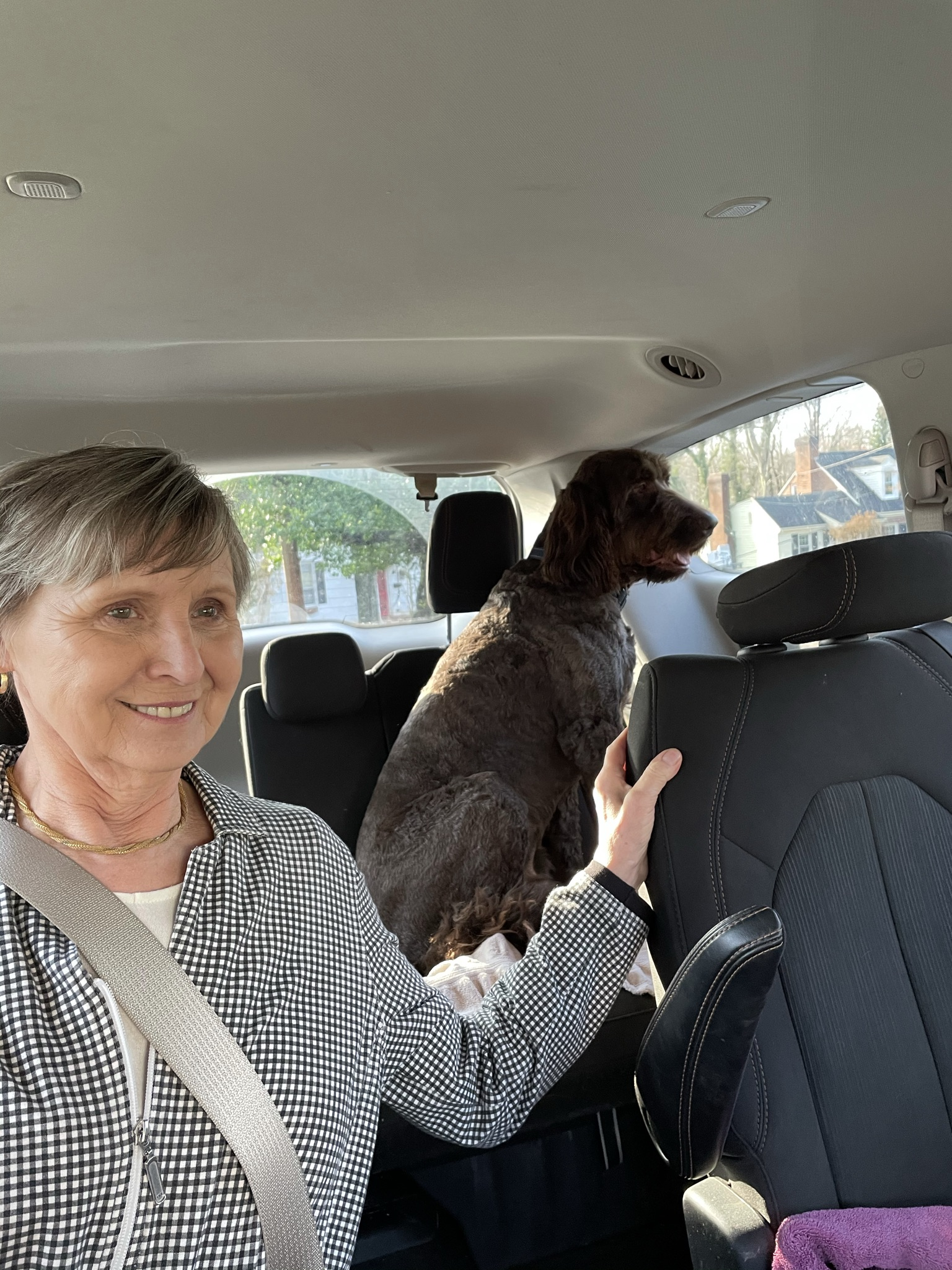Woman and dog in a van