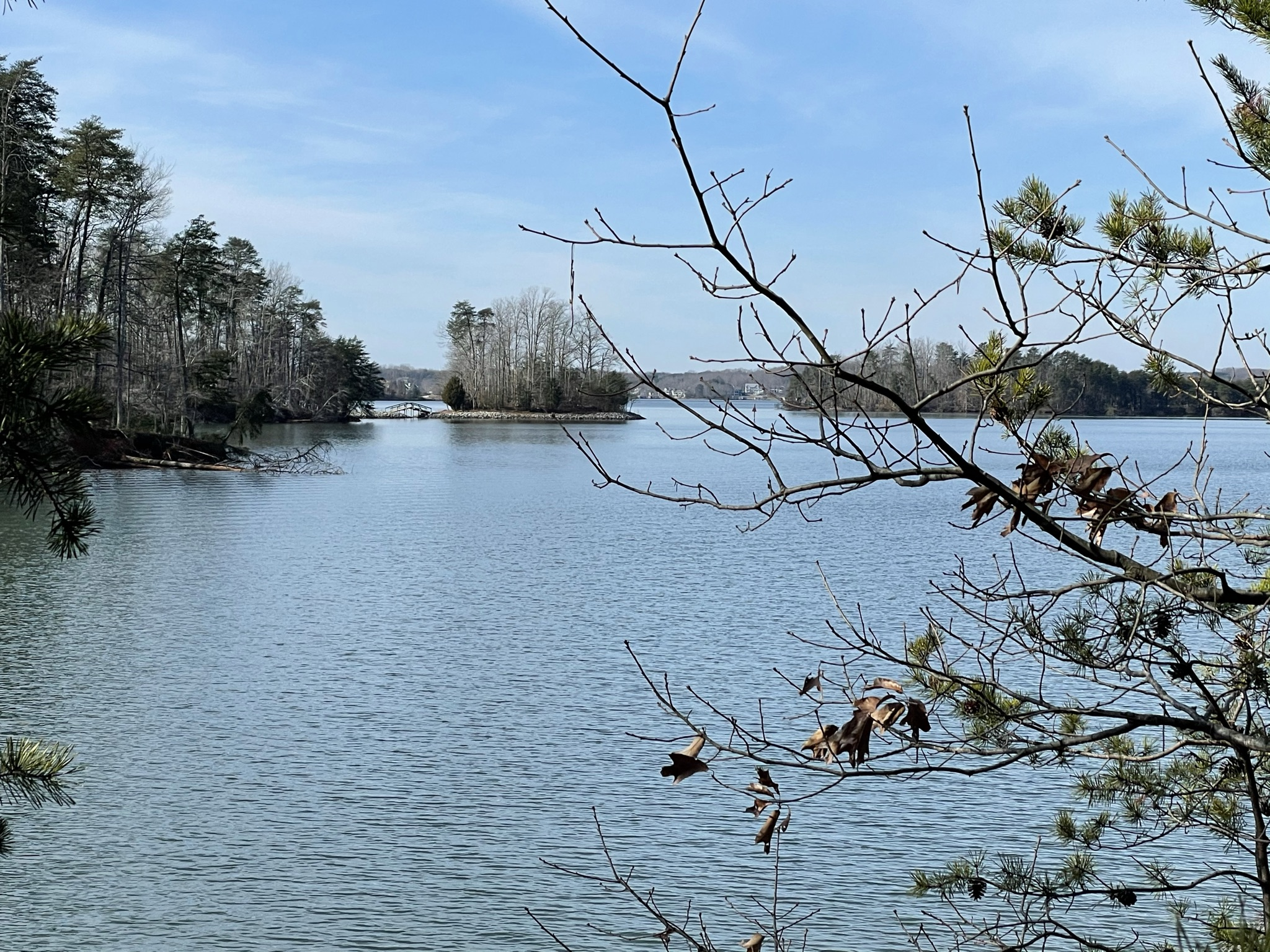 View of Turtle Island in Smith Mountain Lake State Park