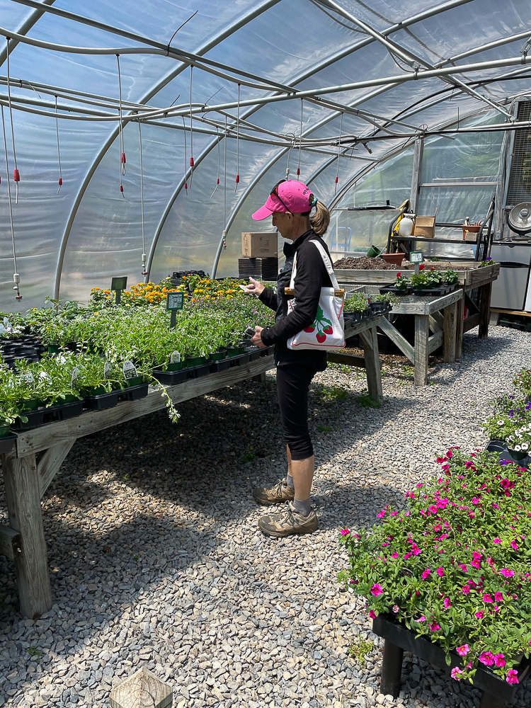 Woman in a greenhouse shopping for plants