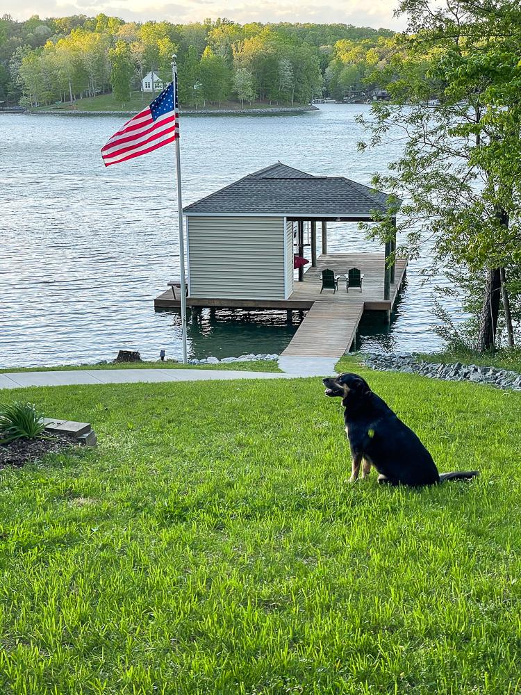 Dock, American Flag and dog at Smith Mountain Lake, VA