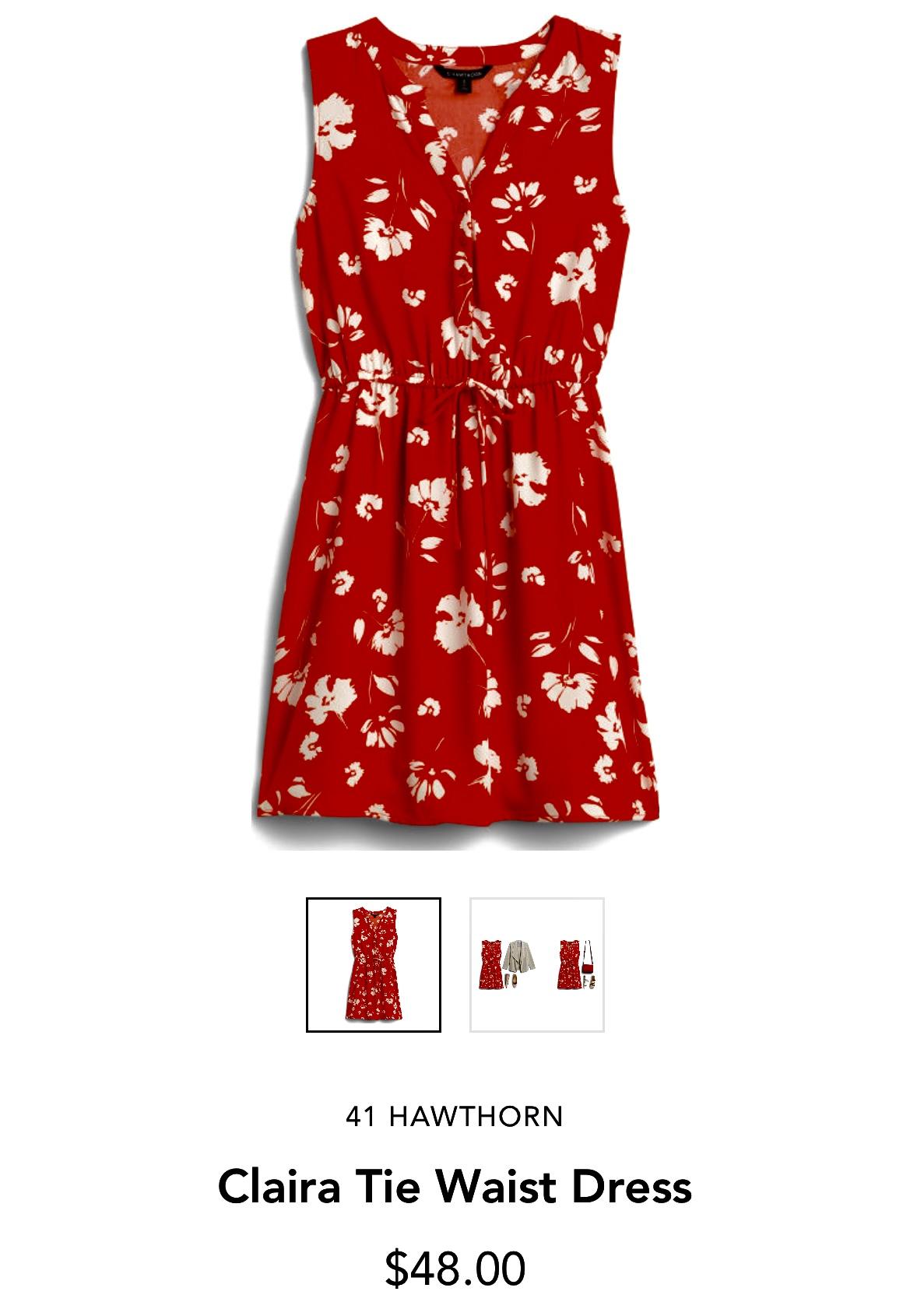 Stitch Fix 41 Hawthorn Claira Tie Waist Dress