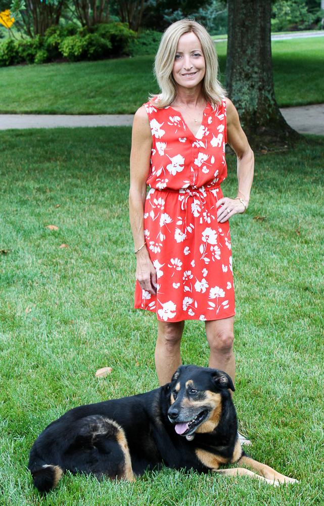 Stitch Fix 41 Hawthorne Claira Tie Waist Dress
