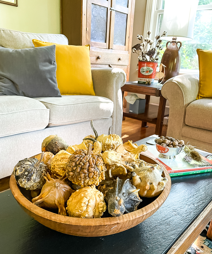 Dried gourds in a wood bowl on a coffee table