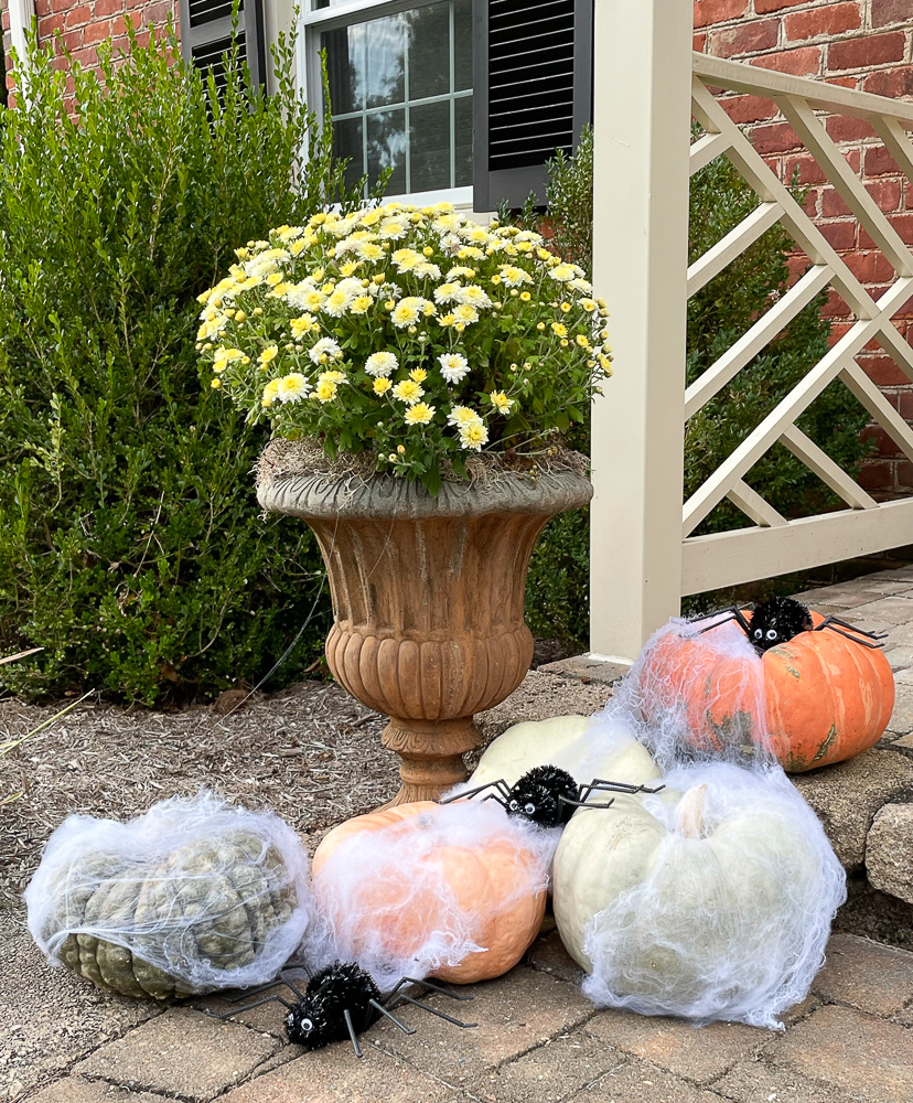 pumpkins arranged around a mum filled urn decorated with spiderweb and spiders